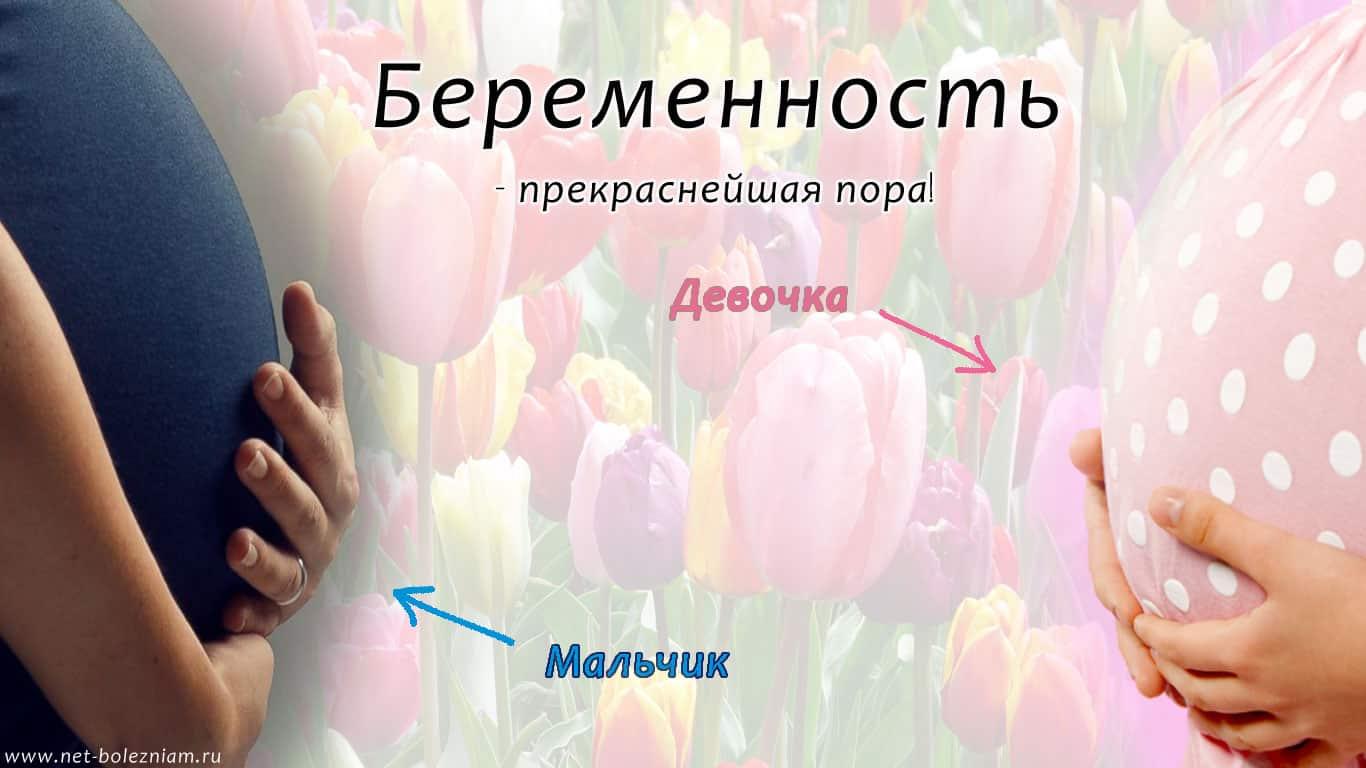 Киров спорт для беременных 9