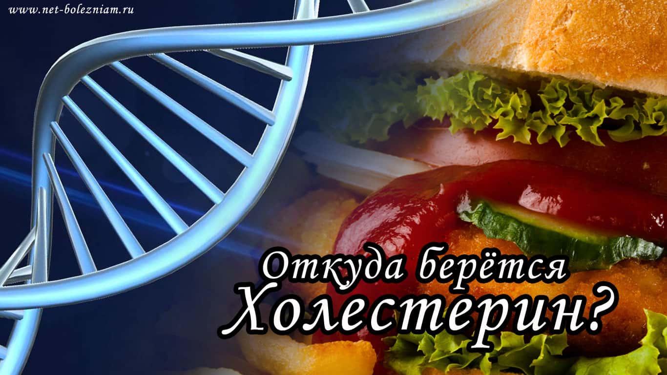 Главными причинами высокого холестерина в крови являются генетическая предрасположенность и питание богатая насыщенными жирами.