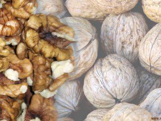 Грецкий орех - химический состав, свойства и противопоказания