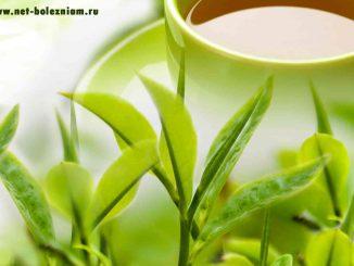 Зелёный чай помогает худеть?