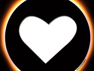 Обследование сердца: 16 методов исследования, которые скажут всё о его состоянии