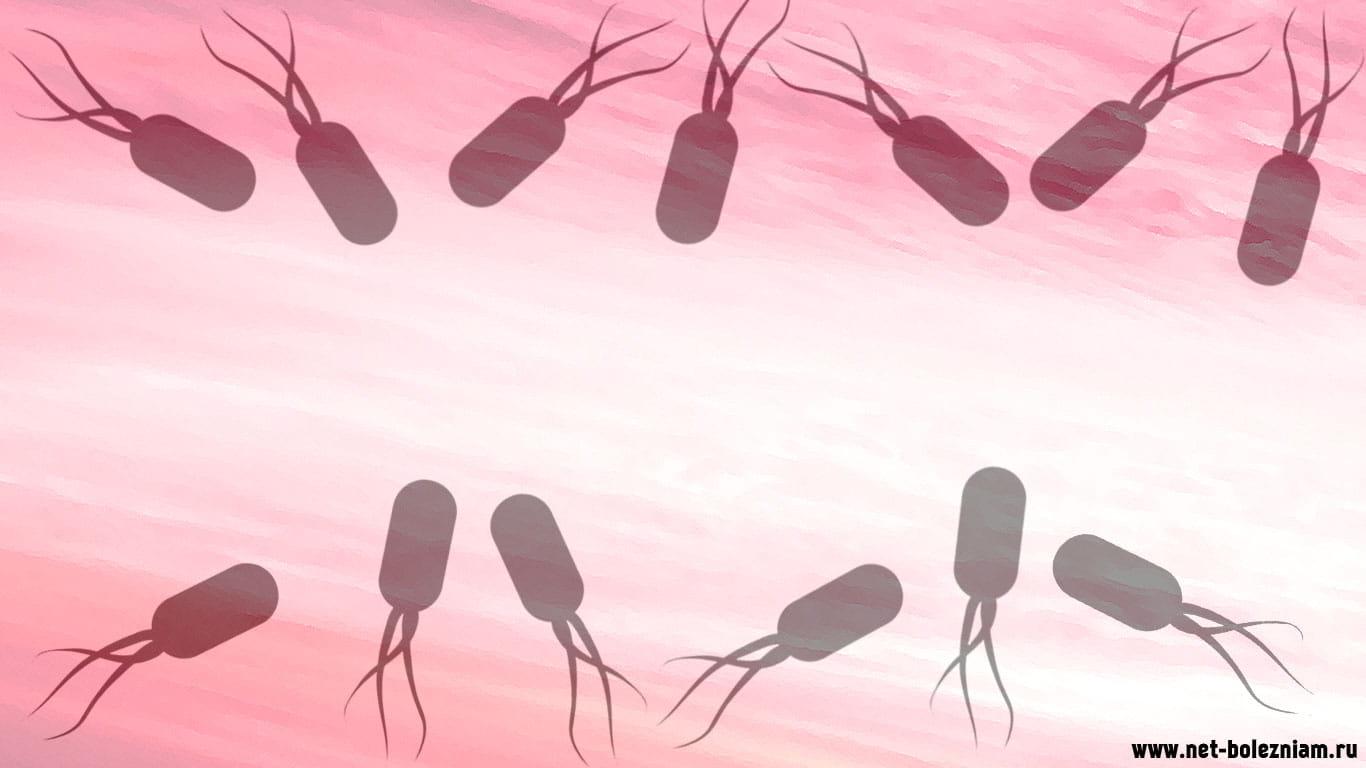 Что такое сепсис (заражение крови): виды, симптомы, лечение и диагностика
