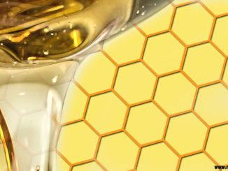 В чём польза мёда: 7 главных его свойств и кому нельзя его есть?